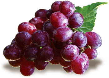 Výsledok vyhľadávania obrázkov pre dopyt zdravé jedlá ovocie zelenina gif png